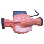 Invena pompa RS25/4G CP-65-040